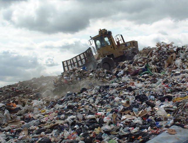 domestic waste essay